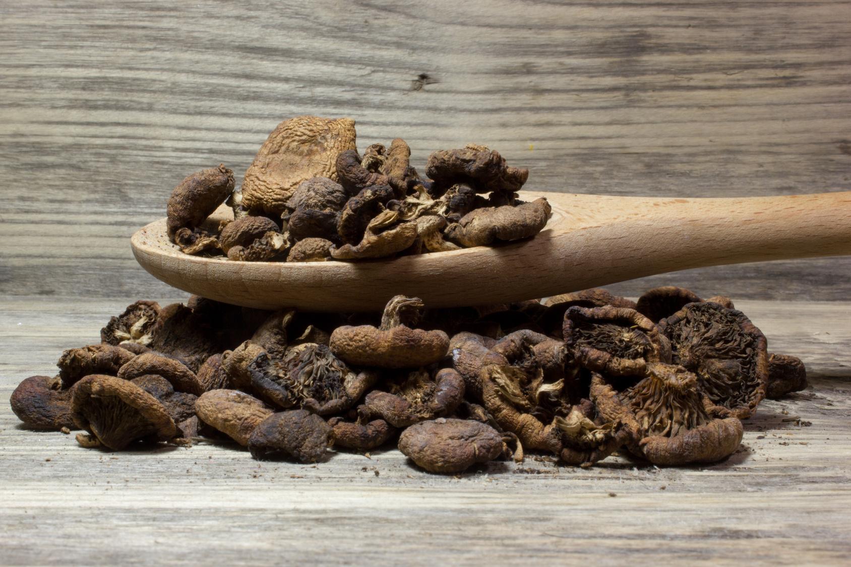 wysuszone grzyby shitake na drewnianej łyżce