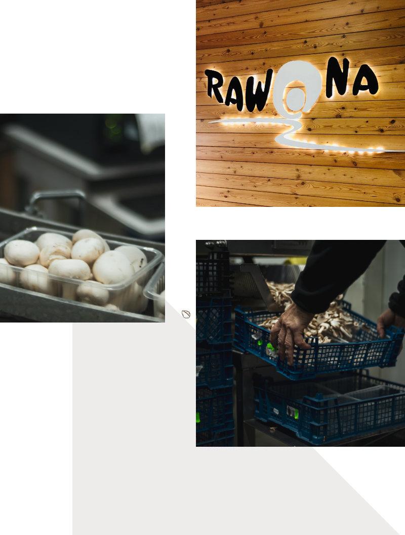 pieczarki Rawona