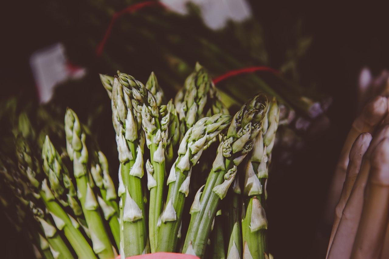 asparagus officinalis o płytkich bruzdach z rodziny szparagowatych
